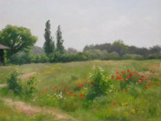Summer Meadow 27 x 35 cm